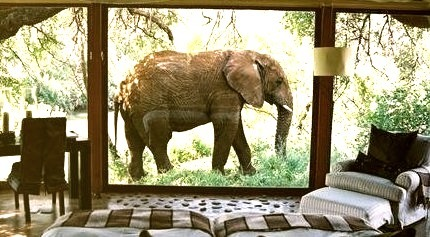 Room With A View, South Africa