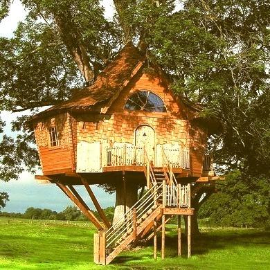 Tree House, Scotland