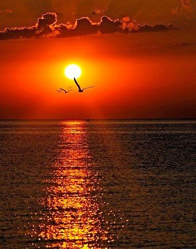 "Beautiful sunrise on The Black Sea, Varna, Bulgaria .]]>"" id=""IMAGE-m7lupyv94m1r6b8aao1_500″ /></a></p> <p>Beautiful sunrise on The Black Sea, Varna, Bulgaria .]]><br />#travel, #Tourism, #beautiful, #europe, #black sea</p>  </div><!-- .entry-content --> </article><!-- #post-67 -->  </main><!-- #main --> </div><!-- #primary -->   <aside id="
