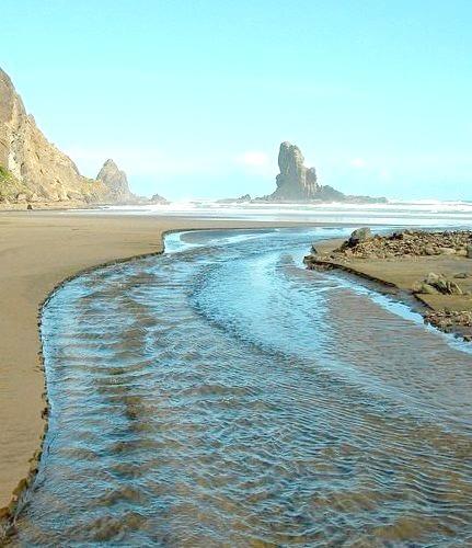 Anawhata Beach near Auckland, New Zealand